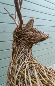 stag close up